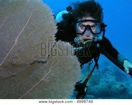 Scuba Diver By Coral Fan