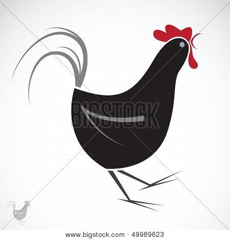Vector Image Of An Chicken