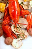 stock photo of lobster tail  - Boiled lobster dinner with clams - JPG