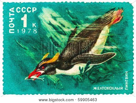 Stamp Printed By Russia, Shows Crested Penguin