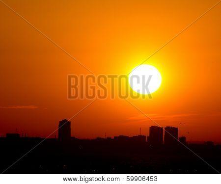 Sunset Gold Grandeur