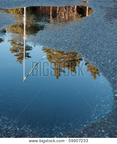 Flag Reflection In A Puddle