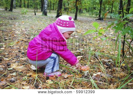 Girl In The Forest Fly Agaric Finger Touches