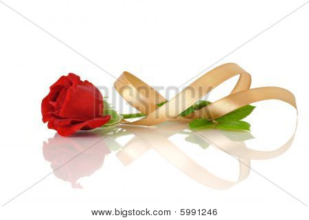 Red rose and gold silk ribbon