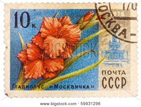Stamp Printed In Ussr (cccp, Soviet Union) Shows Image Of Gladiolus Moscovite And Vdnh Building From