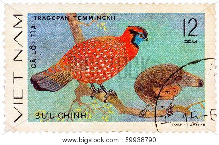 Stamp Printed In Vietnam Shows Tragopan Temminckii Or Temminck's Tragopan, Series Devoted To The Orn