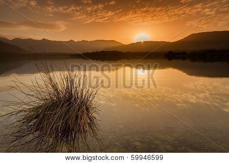 Lac De Codole, Reginu Valley In Corsica