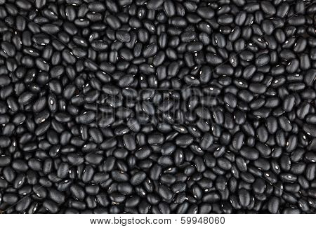 Black bean background