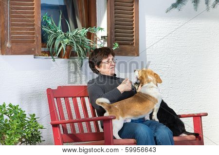 Senior Woman With Dogs