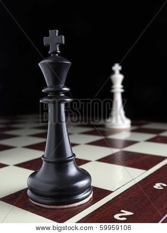 Black and white Kings standing on the opposite sides on the chessboard