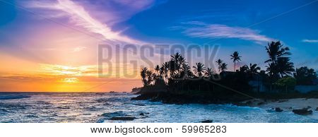 Extremely beautiful  sunset under the coconut plams on Sri Lanka beach.