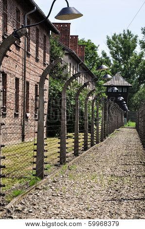 Fence with barbed wire at Auschwitz