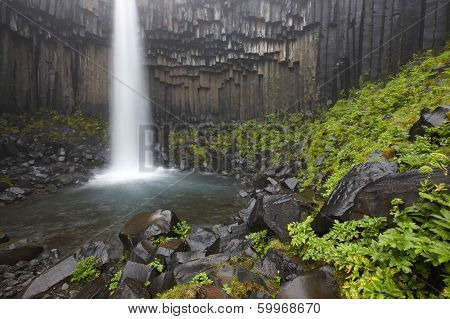 Svartifoss Waterfall And Basaltic Rocks In Iceland.