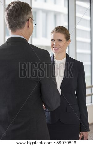 Happy businesswoman shaking hands with businessman in office