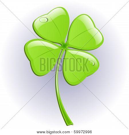 Four leaf clover. Vector illustration.