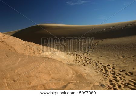 Footprints on the dune