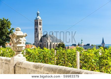Church of St. James with vineyard at front, Kutna Hora, Czech Republic