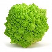 stock photo of romanesco  - a romanesco broccoli on a white background  - JPG