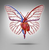 stock photo of cardiovascular  - Healthy human lifestyle and cardiovascular research concept as a heart organ shaped as a butterfly with wings flying up as a metaphor for active life and fitness or disease research success - JPG