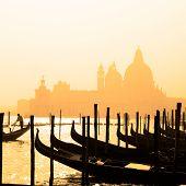picture of gondolier  - Romantic Italian city of Venice  - JPG