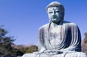 stock photo of kanto  - Great Buddha with blue sky at Kamakura - JPG