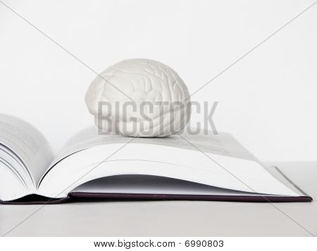 Brain On The Open Book Bw