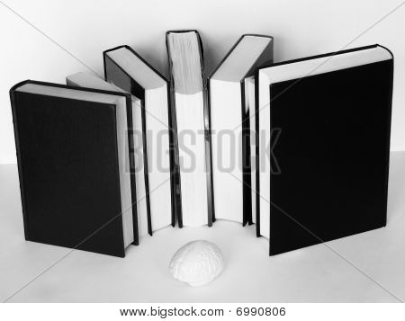 Brain Sourrounded By Books