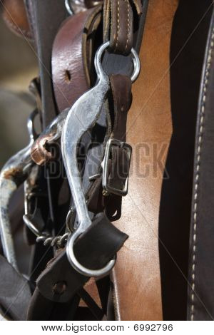Detail Of Horse Bridle