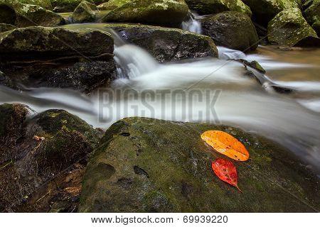 Pha Kluay Mai waterfalls