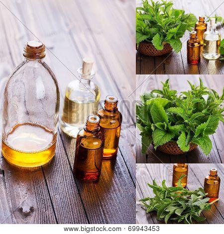 Essential Aroma Oil. Spa Collage.