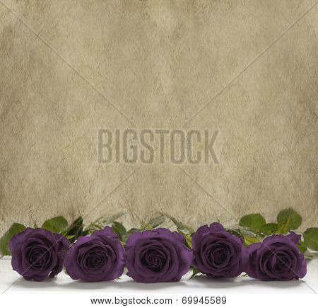 Purple roses on a rustic stone background