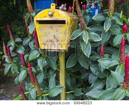 Old Rusty Yellow Mailbox