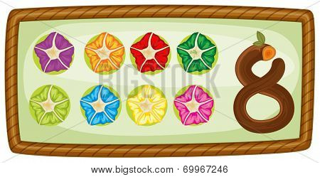 Illustration of a frame with eight flowers on a white background