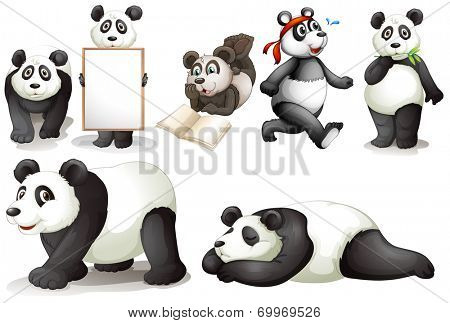 Illustration of the seven pandas on a white background