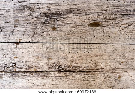 Wooden Background With Wormwood Holes