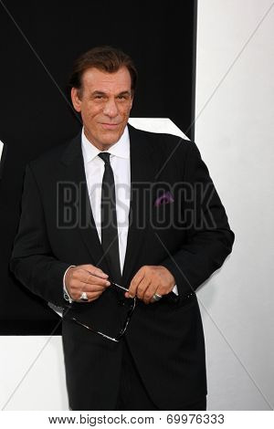 LOS ANGELES - AUG 11:  Robert Davi at the