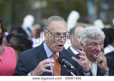 Senator Charles Schumer gestures