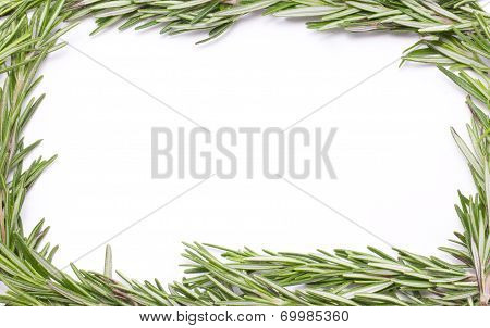Rosemary Herbal Frame.