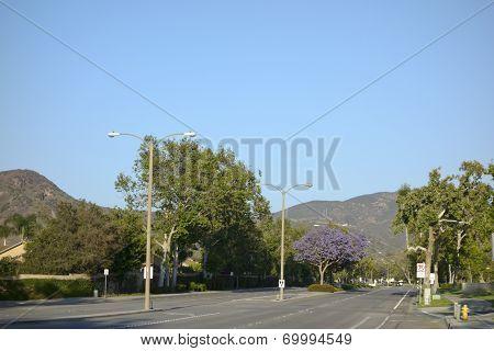 Adolfo Street, Camarillo, CA