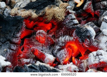 Glowing Embers In The Ash Closeup