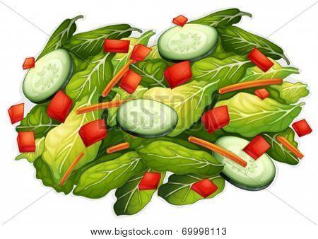 Illustration of a closeup salad