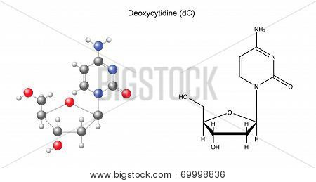 Structural Chemical Formula And Model Of Deoxycytidine