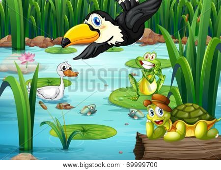Illustration of a pond with animals