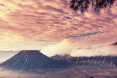 stock photo of bromo  - Bromo Volcano at  Java - JPG