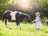 stock photo of pony  - Portrait of tlittle girl having fun at countryside outdoors - JPG