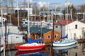 picture of bayou  - Moored sailboats in a bayou in Portland Oregon - JPG