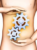 picture of digestion  - The digestive process is represented by some gears in front of a man - JPG