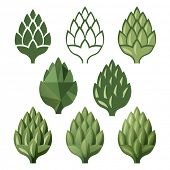 pic of hop-plant  - 8 stylized hop  icons over white background - JPG