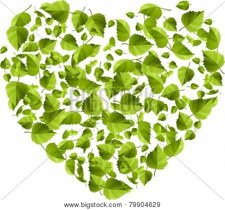 Heart made of green leaves. Eco concept