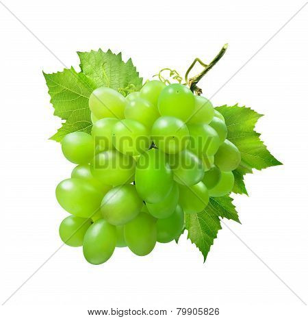 Bunch Of Green Grapes With Leaves Isolated On White Background